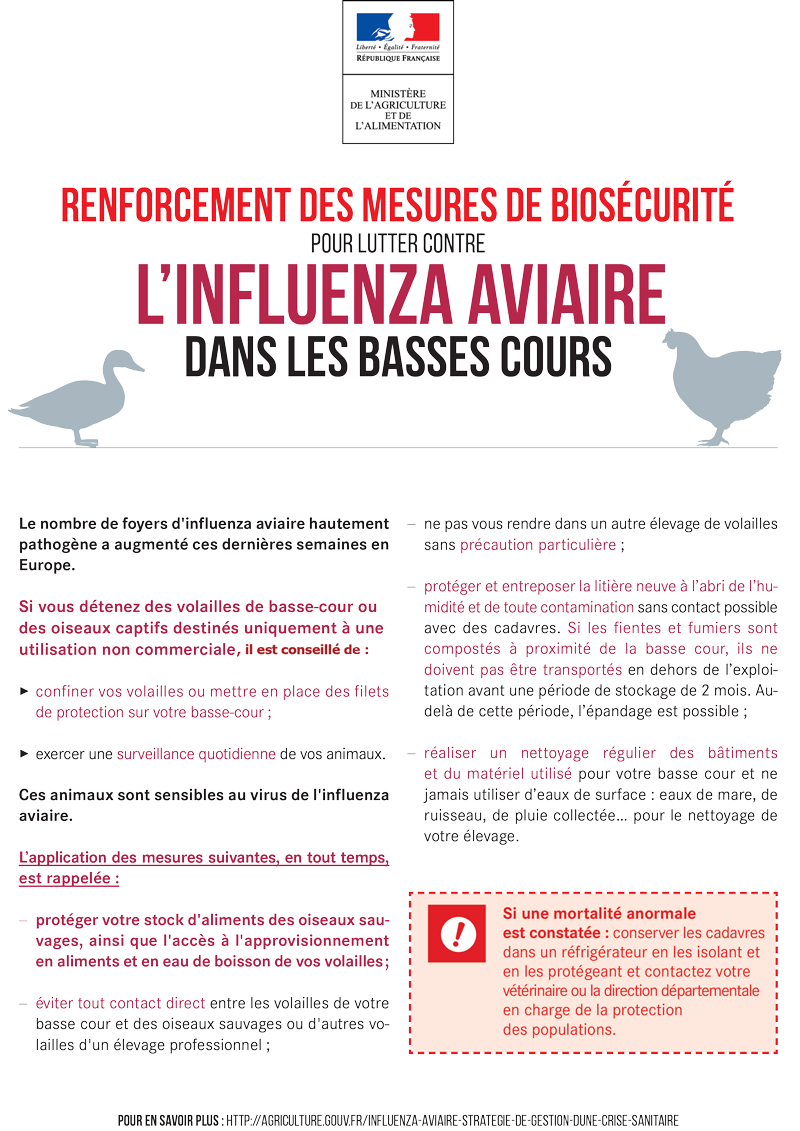200214_Fiche-biosecurite_IA_Basses-cours_rev2.png
